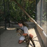083-projekt-po-sohraneniju-Dymchatogo-Leoparda-Bangkok-zoo-january-2008