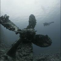 050-Шаб-Руми-Судан-Красное-Море,-Ноябрь-2013