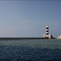 011-Dedalus-Reef