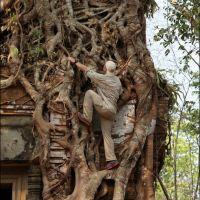 023-Камбоджа-храмовый-комплекс
