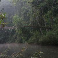 040-Лаос-национальный-парк-Luang-Namtha