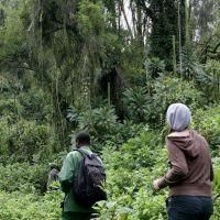 004-Руанда-Декабрь-2012
