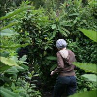 005-Руанда-Декабрь-2012