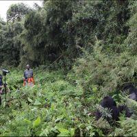 008-Руанда-Декабрь-2012