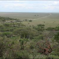 001-Танзания-январь-2013
