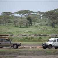 002-Танзания-январь-2013