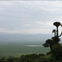012-Танзания-январь-2013