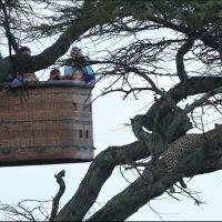024-Танзания-январь-2013