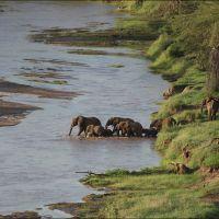 026-Танзания-январь-2013