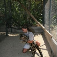 083-проект-по-сохранению-Дымчатого-Леопарда-зоопарк-Бангкока-январь-2008